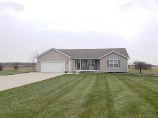 Single Family for sale in 2484 Riley Center Rd, Riley, MI, 48041