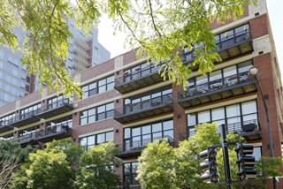 Condo for sale in 1601 South INDIANA Avenue 408, Chicago, IL, 60616