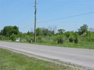 Land for sale in 0 WAR Road, Greater Woodland Beach, MI, 48166