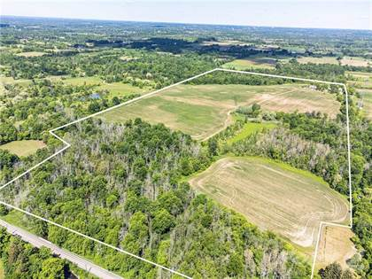 Farm And Agriculture for sale in 217 CARLISLE Road, Flamborough, Ontario, L8N 2Z7