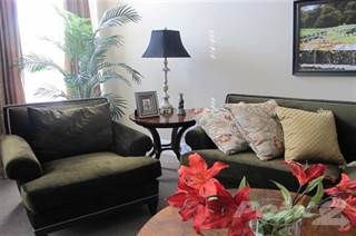 Apartment for rent in Randolph / East Side Square - 1 Bedroom Luxury A, Canton, IL, 61520