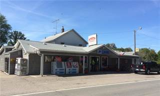 Comm/Ind for sale in 1462 S HUGHES Road, Genoa, MI, 48843