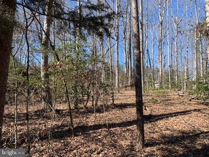 Lots And Land for sale in 117 BUTLER CIRCLE, Locust Grove, VA, 22508