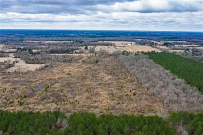 Lots And Land for sale in 0000 CR 4450, Avery, TX, 75550