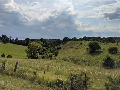 Lots And Land for sale in 0 Georgetown Road, Owenton, KY, 40359