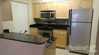 Apartment for rent in The Palms of Clearwater, Clearwater, FL, 33765