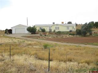Single Family for sale in 55008 Highway 491, Cahone, CO, 81320