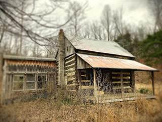 Single Family for sale in 557 Otter Creek Road, Buffalo, KY, 42716
