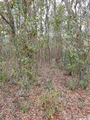 Farm And Agriculture for sale in 000 Terrell Street, Interlachen, FL, 32148