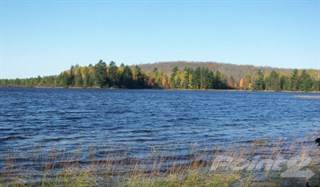 Land for sale in No Name Road, Mercer, WI, 54547