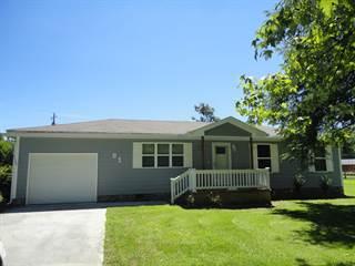 Single Family for sale in 61 Cedar Ln, Trenton, GA, 30752