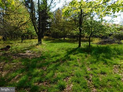 Lots And Land for sale in LOT 17 LAKERIDGE HEIGHTS, Mount Storm, WV, 26739