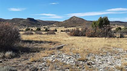 Lots And Land for sale in TBD Milliken Rd, Folsom, NM, 88419