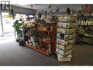 Comm/Ind for sale in 273 TRUNK ROAD, Duncan, British Columbia, V9L4X3