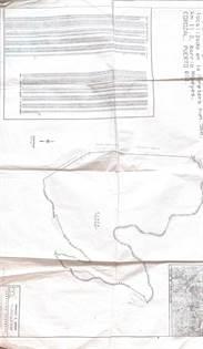 Residential Property for sale in Bo. Magueyes, COROZAL, PR, Corozal, PR, 00783
