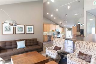 Apartment for rent in The Seasons - Winter, San Ramon, CA, 94583