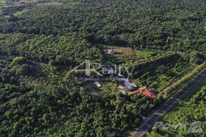 Farm And Agriculture for sale in 511 Acre Spice Farm & Botanical Gardens, Southern Highway, Toledo