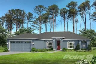 Residential Property for sale in 13134 Snowy Plover, Annutteliga Hammock, FL, 34614