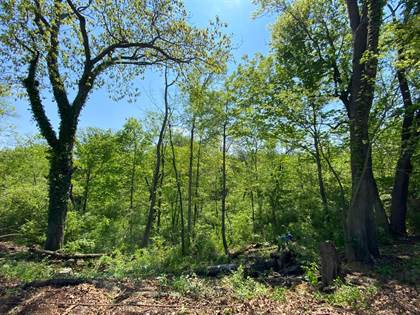 Lots And Land for sale in 5940 Towhee Lane, Cincinnati, OH, 45243