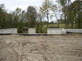 Single Family for sale in 17162 NW County  1481 Road, Archie, MO