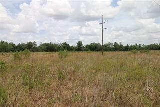 Land for sale in S Hwy 129, Trenton, FL, 32693