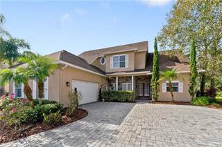 Single Family for sale in 10445 CANARY ISLE DRIVE, Tampa, FL, 33592