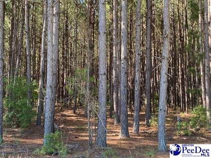 Lots And Land for sale in TBD Highway 1, Hartsville, SC, 29550