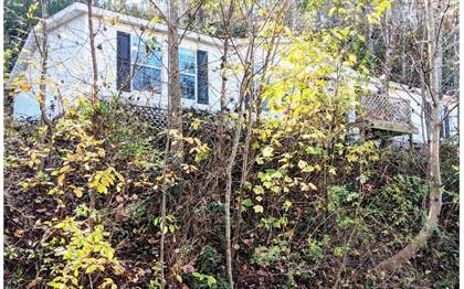 Residential Property for sale in 406 TUSKEEGEE RD, Robbinsville, NC, 28771