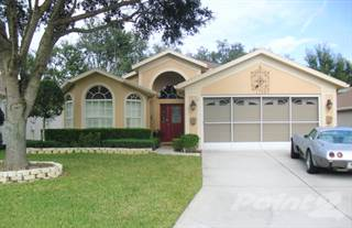 Residential Property for sale in 11207 Heathrow Ave., Spring Hill, FL, 34609
