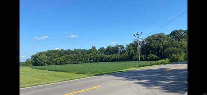 Farm And Agriculture for sale in 0 US Highway 61, Scott City, MO, 63780