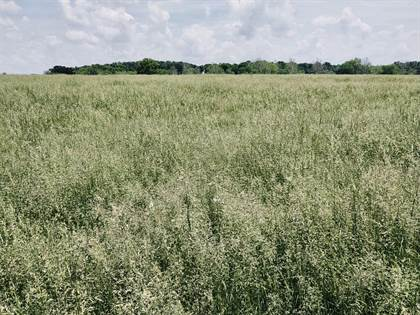 Lots And Land for sale in 000 East 1750 Rd, Fair Play, MO, 65649