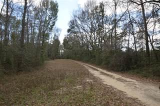 Land for sale in 2227 SYFRETT Road, Greater Alford, FL, 32431