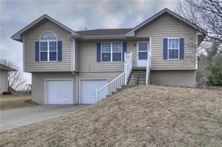 Single Family for sale in 1105 Stonecrest Drive, Kearney, MO, 64060