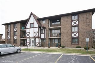 Condo for sale in 10511 South Roberts Road 1B, Palos Hills, IL, 60465