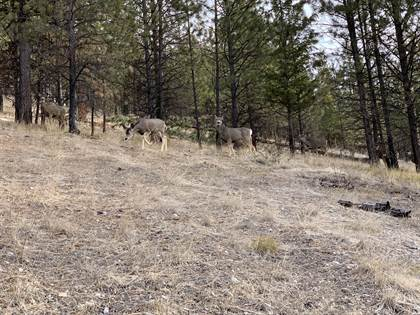 Lots And Land for sale in Nhn Sunrise Creek, Superior, MT, 59872