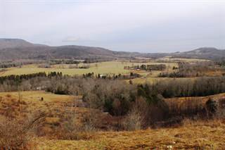 Land for sale in Williams River Road, Marlinton, WV, 24954