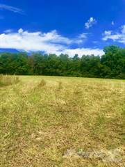 Residential Property for sale in Ben's Run Road, Olive Hill, KY, 41164