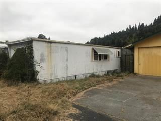 Single Family for sale in 51 & 61 Redwood, Klamath, CA, 95548
