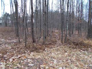 Lots And Land for sale in 876 Snyder Ln, Marienville, PA, 16239