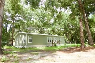 Residential Property for sale in 7471 140th St, Trenton, FL, 32693