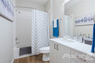 Apartment for rent in The Reserve - E2, Evanston, IL, 60201
