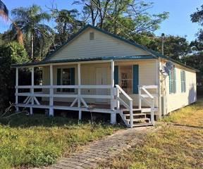 Single Family for sale in 3609 WHITTIER STREET, Tampa, FL, 33619