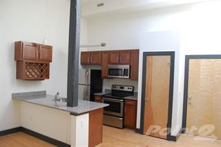 Apartment for rent in Washington Square, Suffolk Borough, VA, 23434