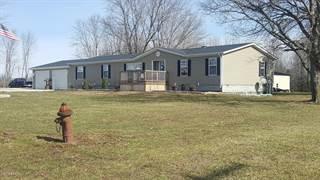 Single Family for sale in 8320 Us Route 51, Tamaroa, IL, 62888