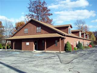 Comm/Ind for sale in 3330 South Main St, Rock Creek, OH, 44084