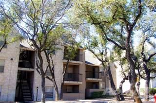 Apartment for rent in Rock Canyon Apartments, San Antonio, TX, 78217