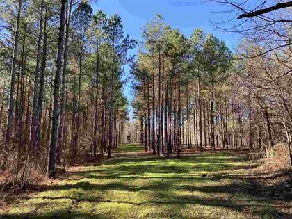 Lots And Land for sale in 0 MOORE RD, Mount Pleasant, MS, 38661