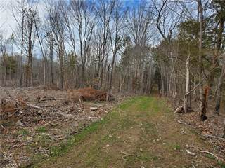 Land for sale in Tract 1 Clapp Mill Road, Burlington, NC, 27215