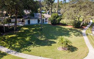 Single Family for sale in 3031 HARVEST MOON DRIVE, Palm Harbor, FL, 34683