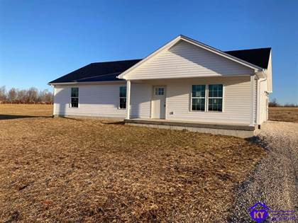 Residential Property for sale in 15232 St John Road, Rineyville, KY, 40162